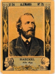 "Series 24 number 75 ""Haeckel, Alemania"""